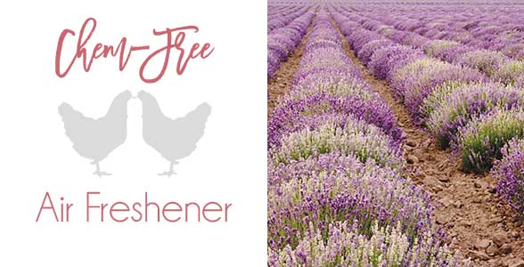 chemical-free-air-freshener-with-lavender-essential-oil