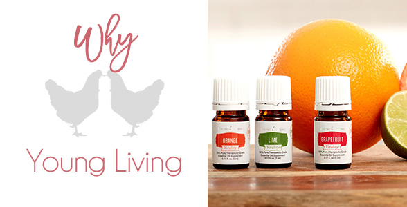 why-i-chose-young-living-essential-oils-for-my-family