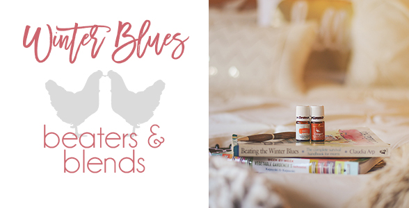 winter-blues-beaters-and-blends-essential-oils-orange-ginger